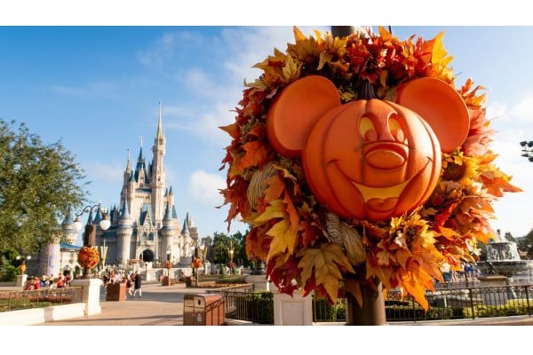 fall themed attractions